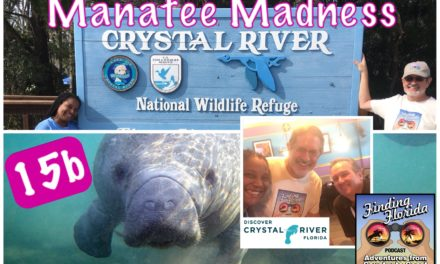 Episode 15b: Manatee Madness in Crystal River