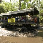 Episode 6a: Billie Swamp Safari Destination Preview