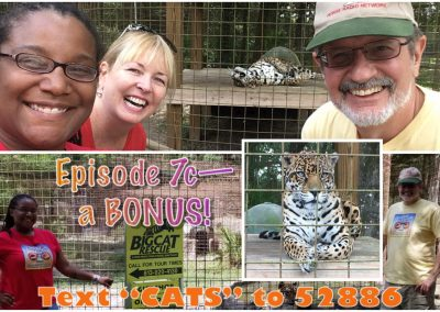 FFP 7c Cover - Big Cat Rescue - with text
