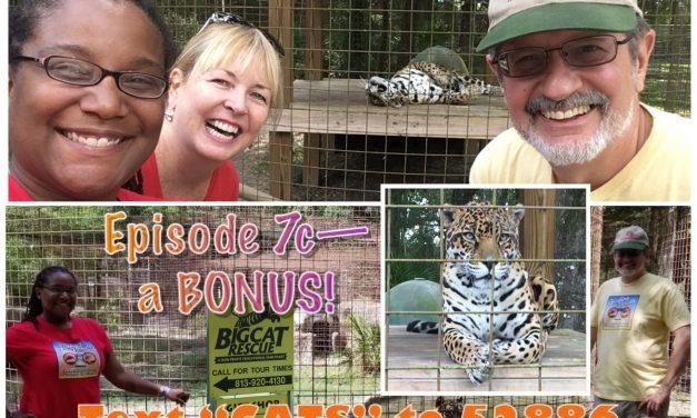 Episode 7c: BONUS – Big Cat Rescue