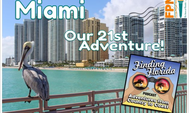 Next Adventure: Mashup in Miami